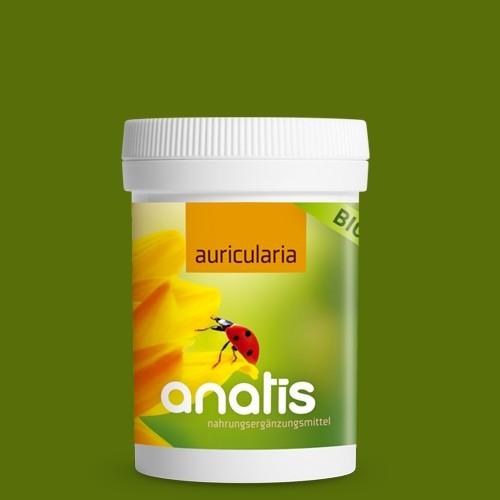 Auricularia Pilz