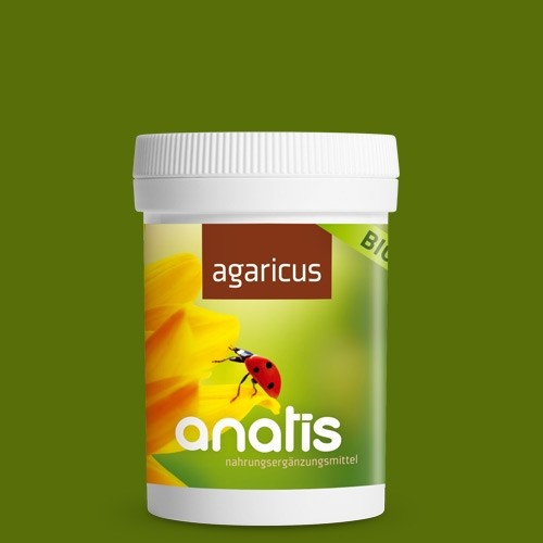 Agaricus Pilz